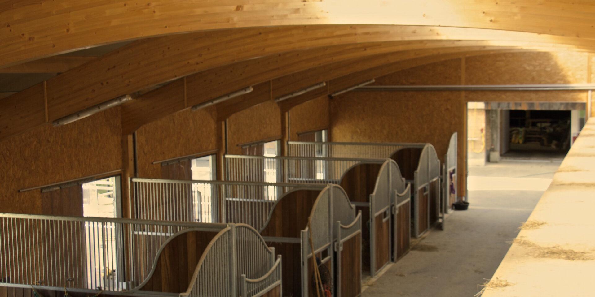 pferdeboxen-pferdepension-einzelhaltung